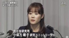STAP細胞_全論文撤回へ_研究成果白紙に(NHKニュース2014年6月4日)_画像2