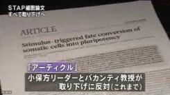 STAP細胞_全論文撤回へ_研究成果白紙に(NHKニュース2014年6月4日)_画像5