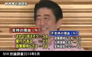 NHK世論調査2014年6月_安倍内閣支持の理由
