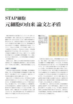 STAP細胞_元細胞の由来、論文と矛盾(日経サイエンス号外6月11日_1)