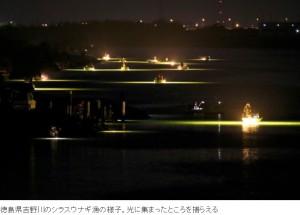 ニッポンが世界のウナギを食い尽くす日_吉野川のシラスウナギ漁の様子_画像3