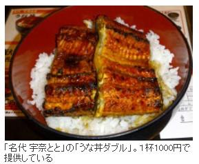 ニッポンが世界のウナギを食い尽くす日_画像2