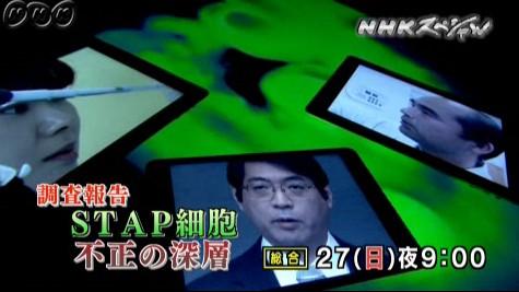 NHKスペシャル_調査報告<STAP細胞 不正の深層>_画像09