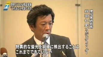 """理研が中間報告 """"STAP細胞はできず""""_NHKニュース画像02"""