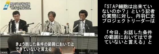 """理研が中間報告 """"STAP細胞はできず""""_NHKニュース画像03"""