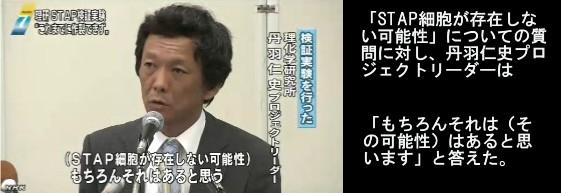 """理研が中間報告 """"STAP細胞はできず""""_NHKニュース画像04"""