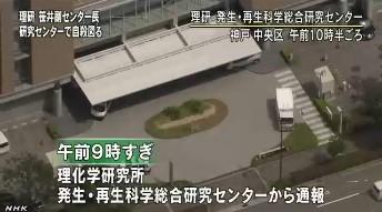 笹井芳樹・理研CDB副センター長が自殺_NHKニュース画像3
