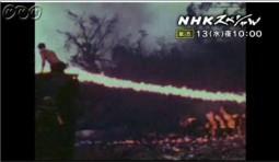 NHKスペシャル_狂気の戦場 ペリリュー_画像08