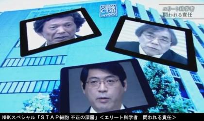 NHKスペシャル「STAP細胞 不正の深層」<エリート科学者 問われる責任>キャプチャ画像